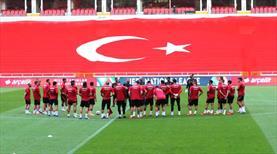 Milli Takım, Macaristan maçına hazır